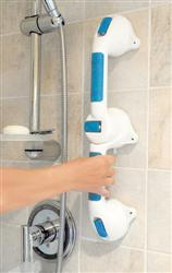 Dual Grip Suction Grab Bar